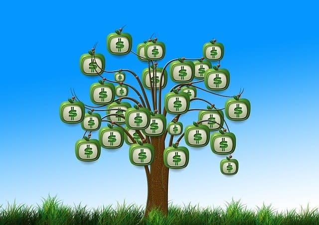 החזרי מס - כל המידע עד לקבלת כסף מהמדינה